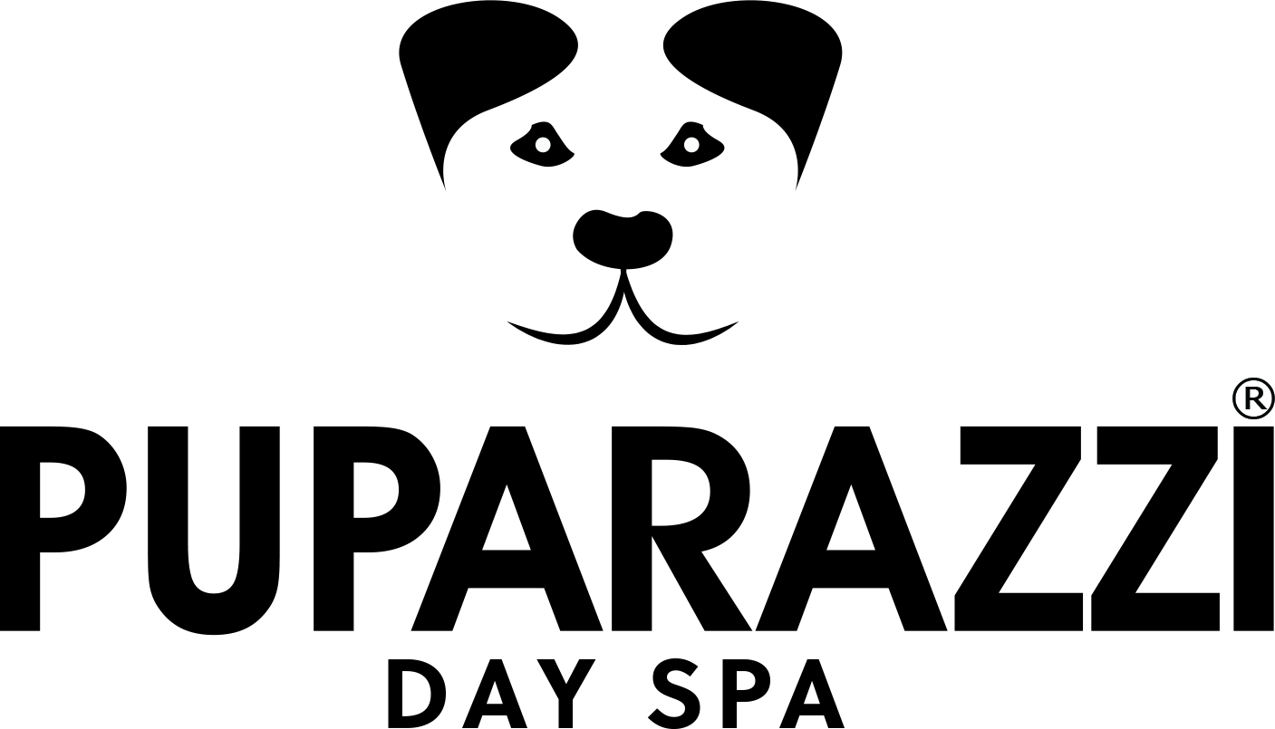 This image has an empty alt attribute; its file name is puparazzi-logo-1.jpg