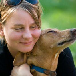 foster carer coordinator needed